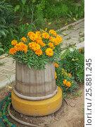 Купить «Старая деревянная кадушка в садовом дизайне», фото № 25881245, снято 25 июня 2015 г. (c) Александр Романов / Фотобанк Лори