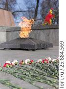 Купить «Цветы возле вечного огня в память погибшим солдатам», фото № 25884569, снято 29 марта 2017 г. (c) ok_fotoday / Фотобанк Лори