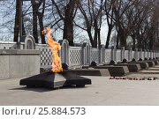 Купить «Вечный огонь. Никто не забыт, ничто не забыто», фото № 25884573, снято 29 марта 2017 г. (c) ok_fotoday / Фотобанк Лори