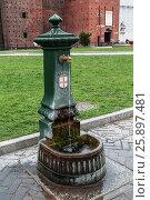 Купить «Старинная водоколонка  в замке Сфорца, средневековой крепости в Милане, Италия», фото № 25897481, снято 7 мая 2014 г. (c) Наталья Волкова / Фотобанк Лори