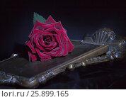 Роза на черном. Стоковое фото, фотограф Лидия Хвесюк / Фотобанк Лори