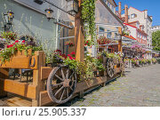 Купить «Composition decor of red flowers of geranium, green on a street in cafe, Riga town, city, Latvia, very old rustic wooden wheel», фото № 25905337, снято 25 мая 2020 г. (c) BE&W Photo / Фотобанк Лори