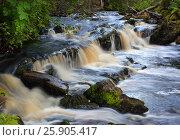 Купить «Waterfall on forest stream long exposure», фото № 25905417, снято 9 августа 2015 г. (c) Михаил Коханчиков / Фотобанк Лори