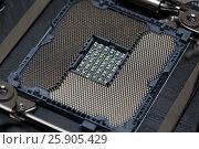 Купить «Socket for central processor unit», фото № 25905429, снято 11 октября 2016 г. (c) Михаил Коханчиков / Фотобанк Лори