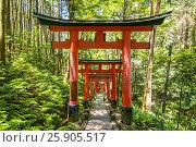 Купить «Beautiful unique red wooden gates in a garden Fushimi inari shrine in Kyoto Japan,», фото № 25905517, снято 18 октября 2019 г. (c) BE&W Photo / Фотобанк Лори