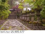 Купить «Stone lanterns on the side of Toshogu Shrine that lead the way to Futarasan Shrine in Nikko, Tochigi, Japan», фото № 25905577, снято 23 марта 2019 г. (c) BE&W Photo / Фотобанк Лори