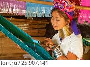 Купить «Young girl from the Padaung long neck hill tribe, Tha Ton, Chiang Mai Province, Thailand», фото № 25907141, снято 26 марта 2019 г. (c) BE&W Photo / Фотобанк Лори