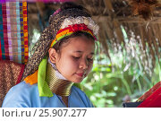 Купить «Woman from the Padaung long neck hill tribe, Tha Ton, Chiang Mai Province, Thailand», фото № 25907277, снято 27 мая 2019 г. (c) BE&W Photo / Фотобанк Лори