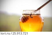 Купить «Мед в стеклянной банке рядом лежит атрибутика», фото № 25913721, снято 4 апреля 2017 г. (c) Анна Рахимова / Фотобанк Лори