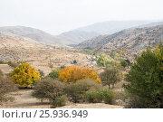 Купить «Узбекистан, горный пейзаж. Зеравшанский хребет в туманной дымке осенним утром. Вид с перевала Тахта-Карача», фото № 25936949, снято 16 октября 2016 г. (c) Юлия Бабкина / Фотобанк Лори