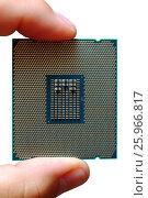 Купить «Fingers hold modern central processor unit», фото № 25966817, снято 11 октября 2016 г. (c) Михаил Коханчиков / Фотобанк Лори