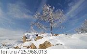 Купить «Зима. Скалы озера Байкал покрытые льдом и снегом», видеоролик № 25968013, снято 17 марта 2017 г. (c) Виталий Зверев / Фотобанк Лори