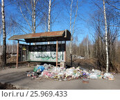 Купить «Стихийная свалка мусора на автобусной остановке. Заводская улица. Ногинский район. Московская область», эксклюзивное фото № 25969433, снято 26 марта 2017 г. (c) lana1501 / Фотобанк Лори