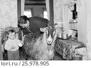Купить «1987.07.14. СССР. Советское детство. В сельском доме. Женщина и ее внучка собираются доить козу.», фото № 25978905, снято 14 июля 1987 г. (c) Александр С. Курбатов / Фотобанк Лори