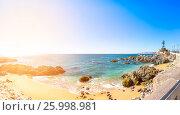 Coastline in Vina del Mar, Chile (2016 год). Стоковое фото, фотограф Юрий Губин / Фотобанк Лори