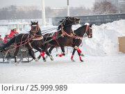 January 20 - 2013, Russia Troyka -three horses racing - winter President Cup of Russia in Moscow. Редакционное фото, фотограф Александр Новиков / Фотобанк Лори