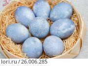 Купить «Пасхальные яйца голубого цвета, окрашенные отваром каркаде», эксклюзивное фото № 26006285, снято 16 апреля 2017 г. (c) Dmitry29 / Фотобанк Лори