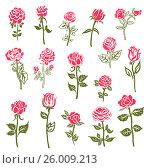 Roses design elements. Стоковая иллюстрация, иллюстратор Миронова Анастасия / Фотобанк Лори