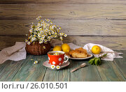 Натюрморт с аптечной ромашкой, ромашковым чаем на деревянном столе. Стоковое фото, фотограф Татьяна Ляпи / Фотобанк Лори