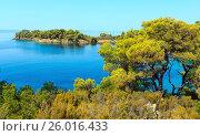 Купить «Morning Aegean coast, Sithonia, Greece.», фото № 26016433, снято 24 июля 2016 г. (c) Юрий Брыкайло / Фотобанк Лори
