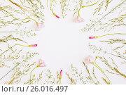 Круговая рамка из полевых цветов. Фон для открытки с полевыми цветами. Стоковое фото, фотограф Galina Barbieri / Фотобанк Лори