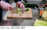 Купить «hands of male cook chopping cucumber in kitchen», видеоролик № 26025381, снято 2 июня 2020 г. (c) Syda Productions / Фотобанк Лори