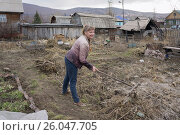 Женщина граблями собирает мусор на участке ранней весной. Стоковое фото, фотограф Светлана Попова / Фотобанк Лори
