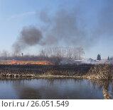 Купить «Ежегодное сжигание камыша вдоль берега. Огонь идёт в сторону домов. Вдали водонапорная башня.», фото № 26051549, снято 22 апреля 2017 г. (c) Нина Карымова / Фотобанк Лори