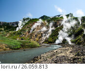 Купить «Panorama of Geysers Valley in Kamchatka peninsula Russia», фото № 26059813, снято 25 июля 2009 г. (c) Сергей Майоров / Фотобанк Лори