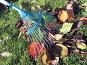 Уборка листьев осенью, фото № 26061301, снято 10 октября 2009 г. (c) Анатолий Заводсков / Фотобанк Лори