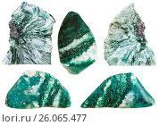Купить «Set of clinochlore stones and polished gemstones», фото № 26065477, снято 28 июля 2020 г. (c) easy Fotostock / Фотобанк Лори