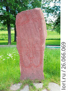 Купить «Runic inscriptions on a runestone», фото № 26066069, снято 7 июня 2020 г. (c) easy Fotostock / Фотобанк Лори