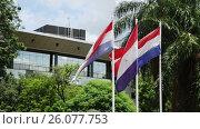 Купить «National flag of Paraguay in front of the Legislative Palace. Asuncion, Paraguay», видеоролик № 26077753, снято 22 марта 2017 г. (c) Яков Филимонов / Фотобанк Лори
