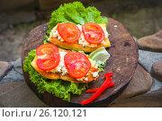 Купить «Bruschetta with tomato and goat cheese on a white wooden background», фото № 26120121, снято 30 мая 2020 г. (c) Марина Володько / Фотобанк Лори