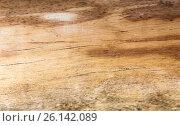 Купить «old wooden board surface background», фото № 26142089, снято 7 февраля 2015 г. (c) Syda Productions / Фотобанк Лори