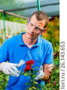 Купить «Biologist examines flowers, processes with a substance from a test tube», фото № 26143653, снято 15 июля 2016 г. (c) Константин Лабунский / Фотобанк Лори