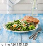 Купить «Quail Egg Salad with Curry Yogurt Dressing», фото № 26155125, снято 14 марта 2017 г. (c) Татьяна Ворона / Фотобанк Лори