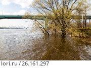 Купить «Наводнение: затопленный пляж в Тверицах, деревья в воде, Ярославль», фото № 26161297, снято 2 мая 2017 г. (c) Илья Бесхлебный / Фотобанк Лори