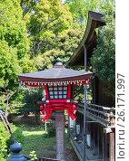Купить «Япония.Торо - традиционный фонарь в синтоистском храме.», фото № 26171997, снято 19 апреля 2017 г. (c) Галина Савина / Фотобанк Лори