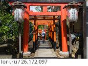 Купить «Япония. Главные ворота перед входом в синтоистский храм.», фото № 26172097, снято 19 апреля 2017 г. (c) Галина Савина / Фотобанк Лори
