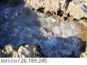 Морская соль на поверхности скалы. Стоковое фото, фотограф Татьяна Никитина / Фотобанк Лори