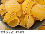 Купить «Italian snail lumaconi pasta», фото № 26189805, снято 13 апреля 2017 г. (c) Francesco Perre / Фотобанк Лори