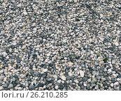 Mobile photo grey peble textured background. Стоковое фото, фотограф Anton Chechotkin / Фотобанк Лори