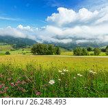 Alps meadow summer view. Стоковое фото, фотограф Юрий Брыкайло / Фотобанк Лори
