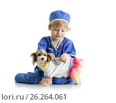 Купить «little boy examining puppy dog, isolated on white background», фото № 26264061, снято 23 апреля 2017 г. (c) Оксана Кузьмина / Фотобанк Лори