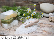 Купить «Items for spa», фото № 26266481, снято 8 мая 2017 г. (c) Типляшина Евгения / Фотобанк Лори