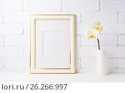Купить «Gold decorated frame mockup with soft yellow orchid in vase», фото № 26266997, снято 13 мая 2017 г. (c) TasiPas / Фотобанк Лори