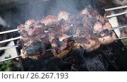 Купить «Barbecue of meat roasted on charcoal», видеоролик № 26267193, снято 14 мая 2017 г. (c) Кузьмов Пётр / Фотобанк Лори