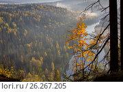 Утро на реке Усьва. Стоковое фото, фотограф Юрий Дерябин / Фотобанк Лори