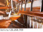 Barman is serving beer from faucet. Стоковое фото, фотограф Сергей Петерман / Фотобанк Лори